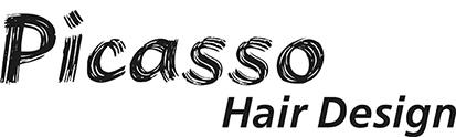 picasso hairdesign